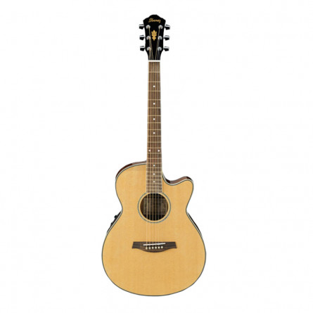 Ibanez AEG8 TNE NT Semi Classical Guitar Natural