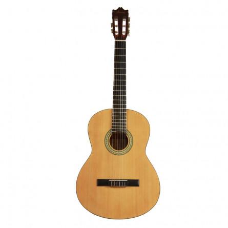 Ibanez GA3NJP AM Classical Guitar Pack Amber