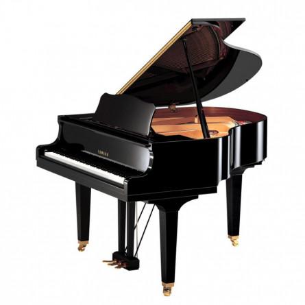 Yamaha GB1K PE Grand Piano Polish Ebony