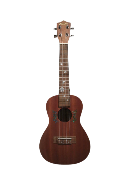 BAMBOO Iris Concert Ukulele Earth Series Acoustic | For Beginners and Professionals | Sapele & Walnut | With Gig Bag (New Generation)